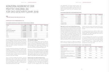 Polytec - Konzernlagebericht